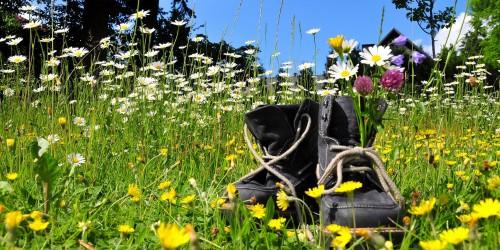 Blumenwiese mit Wanderstiefeln