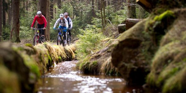 Mountainbiking am Kunstgraben in Lautenthal